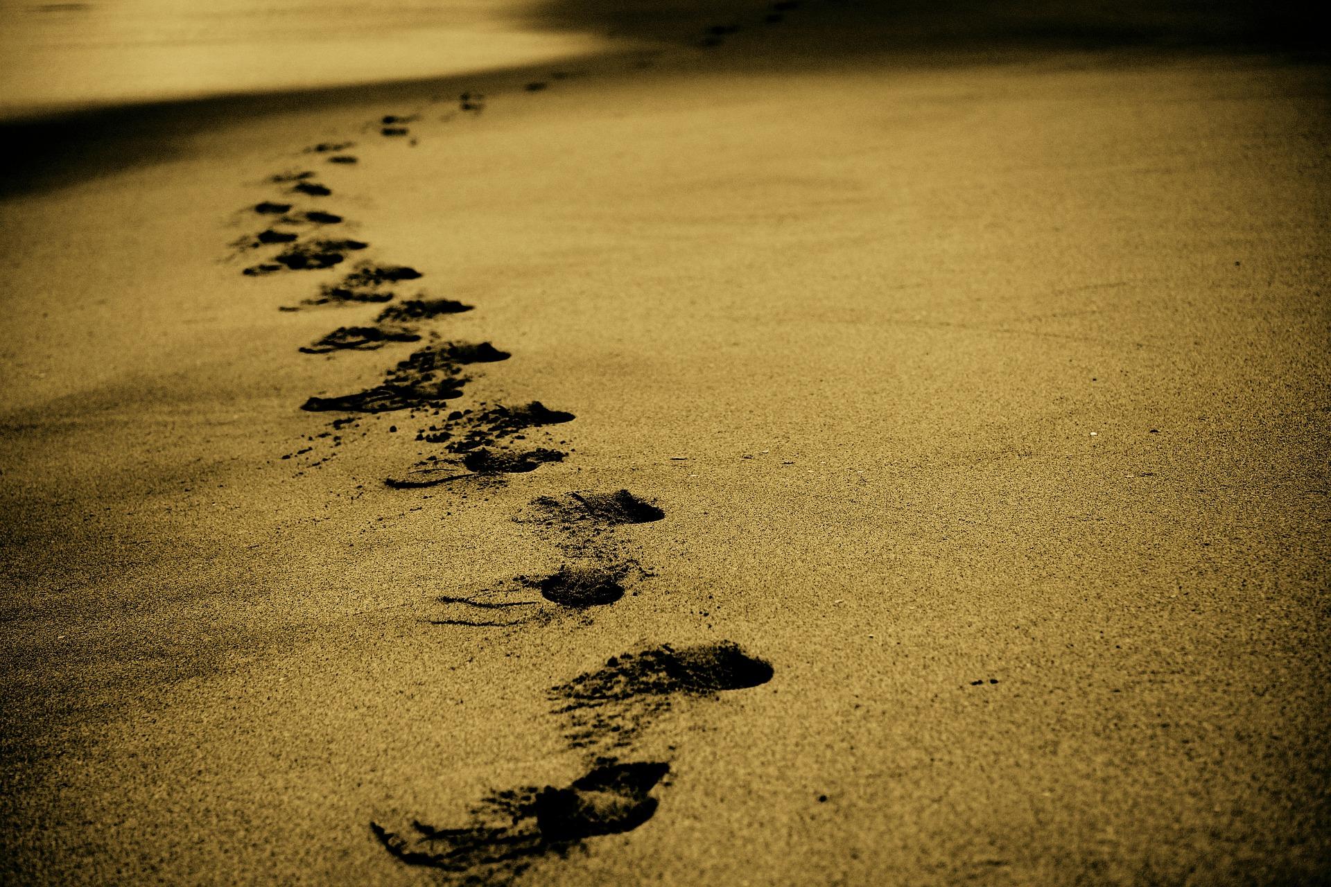 Den Inneren Weg gehen: Was vor der Erleuchtung noch zu tun ist
