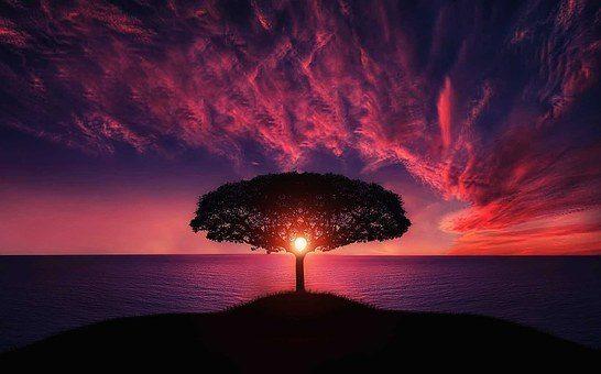 Meditation – Nahrung für die Seele