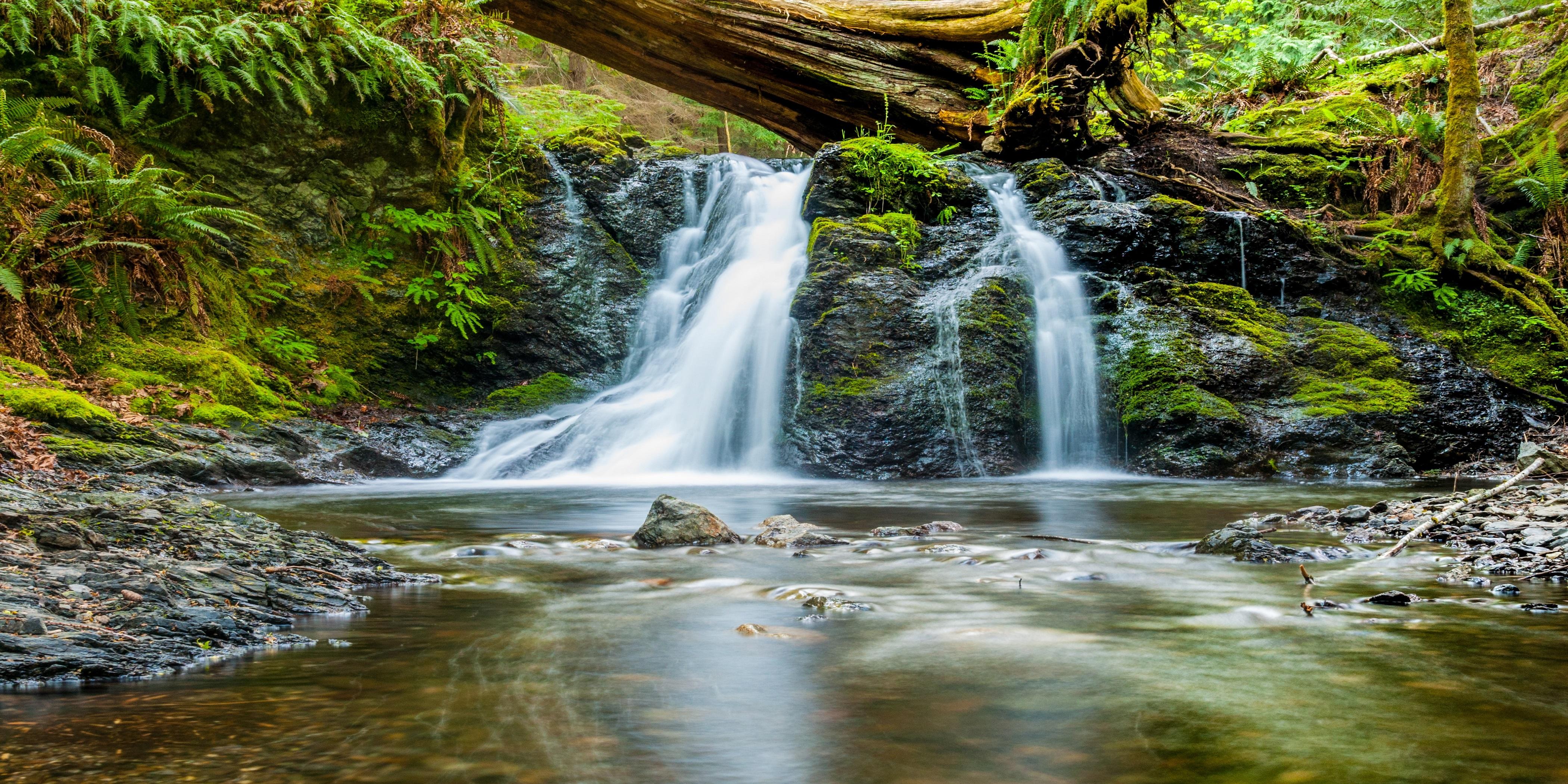 Natur und Gesundheit – Auf dem Weg zur Quelle